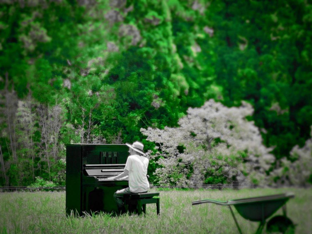 nature piano